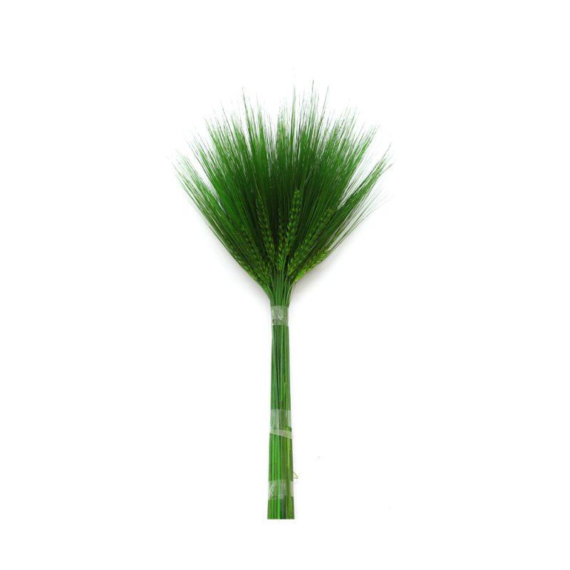 barley- orzo green