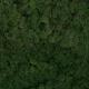Lichen - Moss Green 54