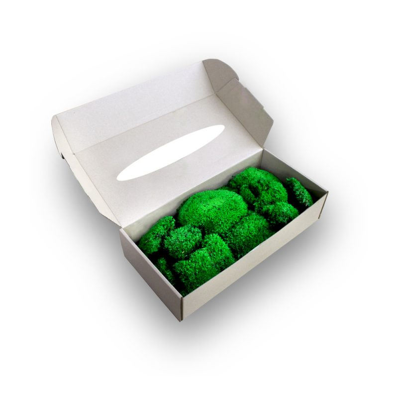 Ballmoss-box-2