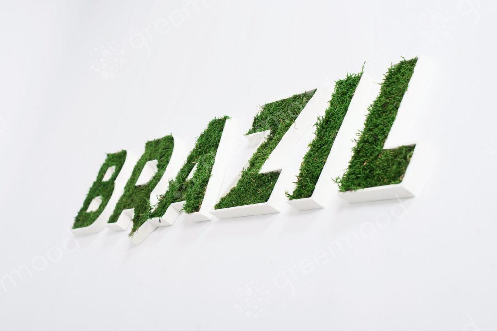 Logo – Brazil