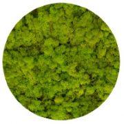 55 Spring Green