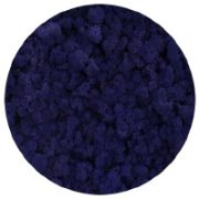 67 Purple