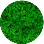79 Grass Green Light