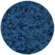 85 Lavender Blue